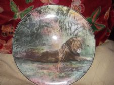 COLLECTABLE GILDED DISPLAY PLATE ROYAL DOULTON D6359 AFRICAN GAME RESERVE LION